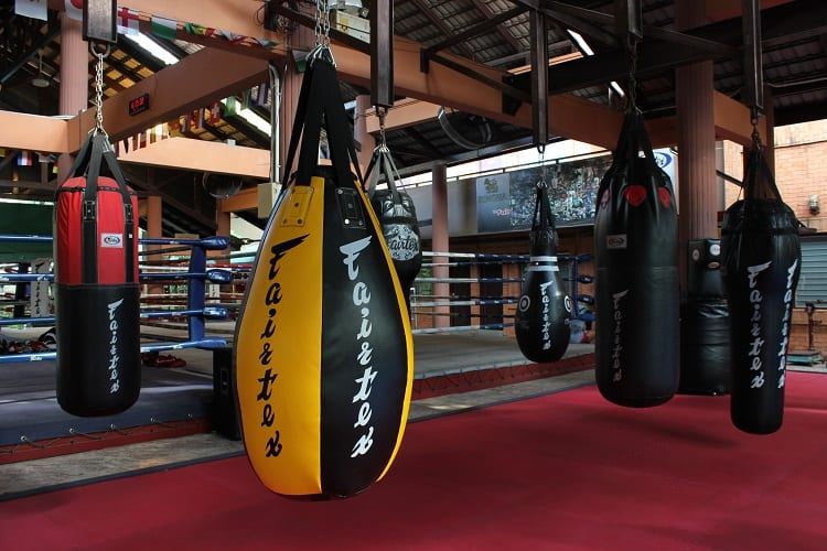 Different Boxing Bags In Gym