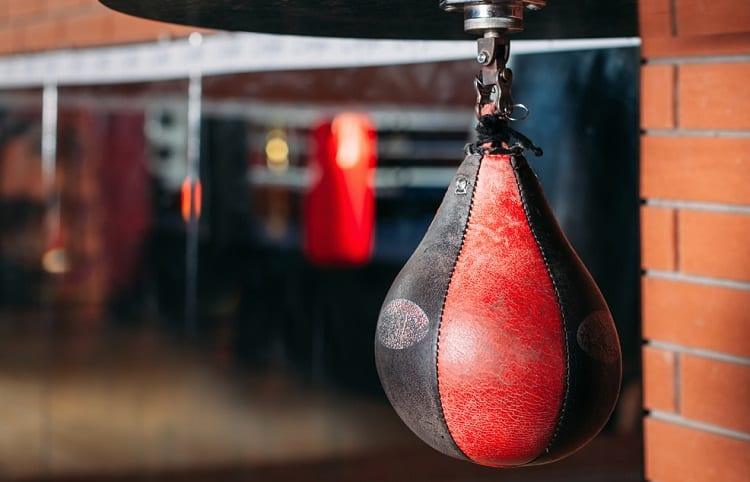 Punching Speed Bag