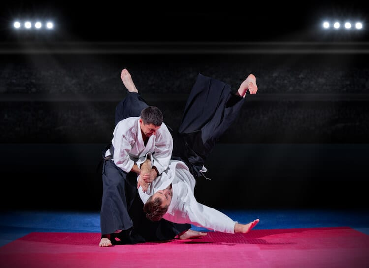Aikido Fighters