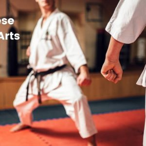 Japanese Martial Arts Styles