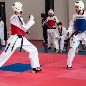 Korean Martial Arts Styles