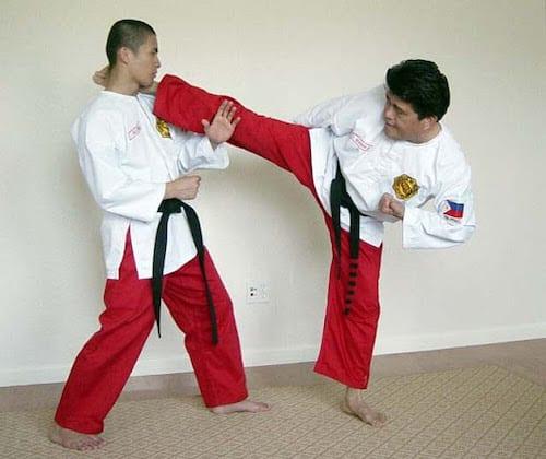 Filipino Martial Arts 2